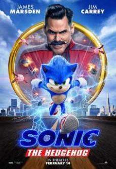 Kirpi Sonic 2020